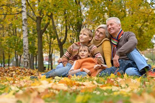 fall activities for seniors
